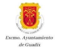 logo excelentísimo ayuntamiento de guadix