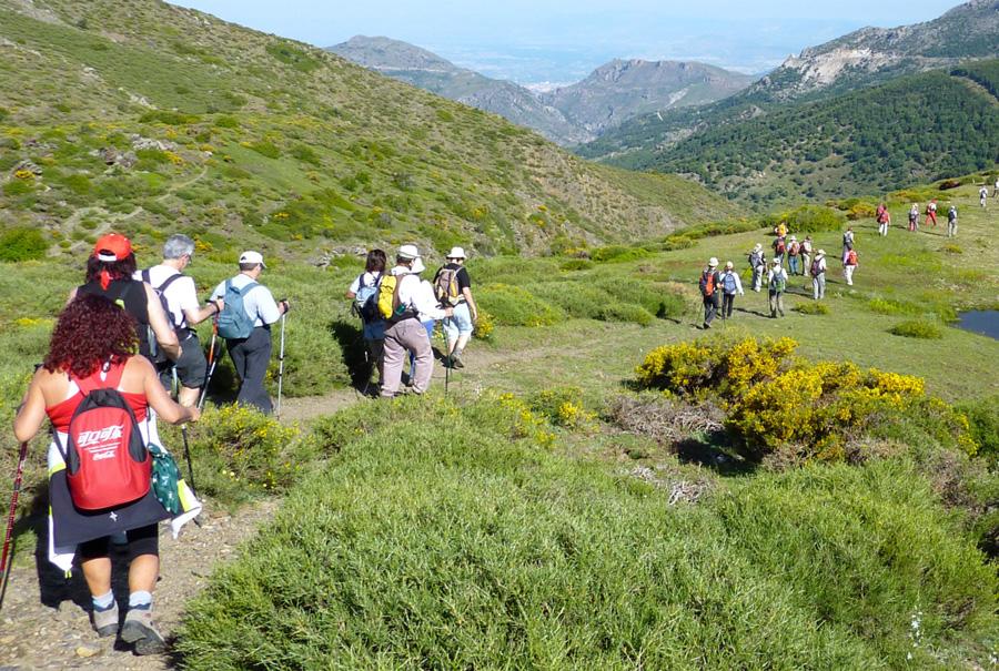 senderistas caminand por área de montaña con prados verdes